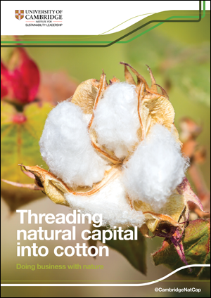 Threading-Cotton-Natural-Ca.png