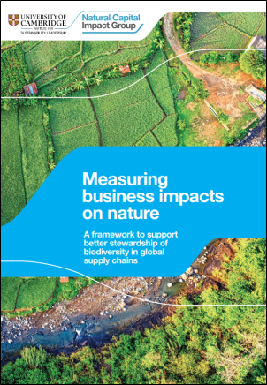 Measuring Business Impacts on Nature