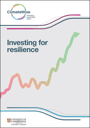 Investing for resilience
