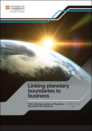 Linking planetary boundaries to business