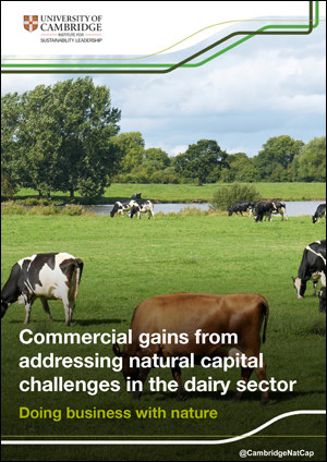 Natural capital challenges