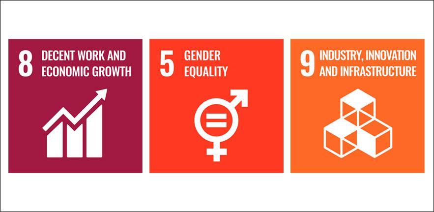 SDGs 589