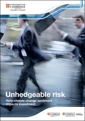 Unhedgeable Risk