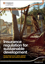 Insurance Regulation report