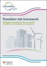Transition Risk Framework