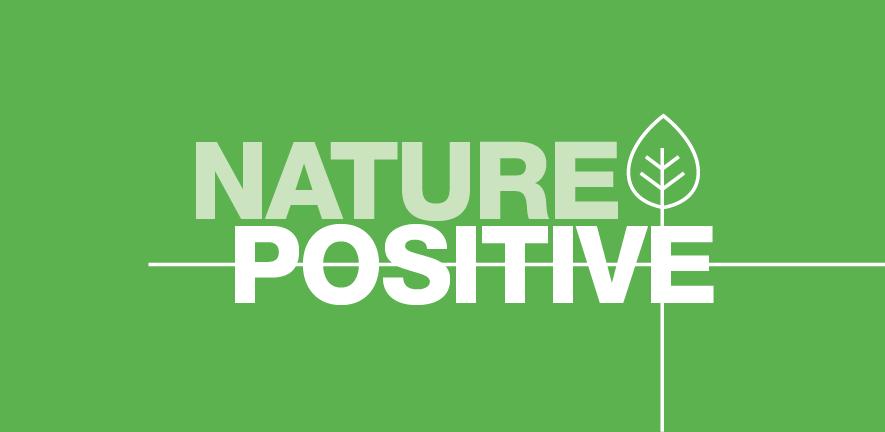 Nature positive